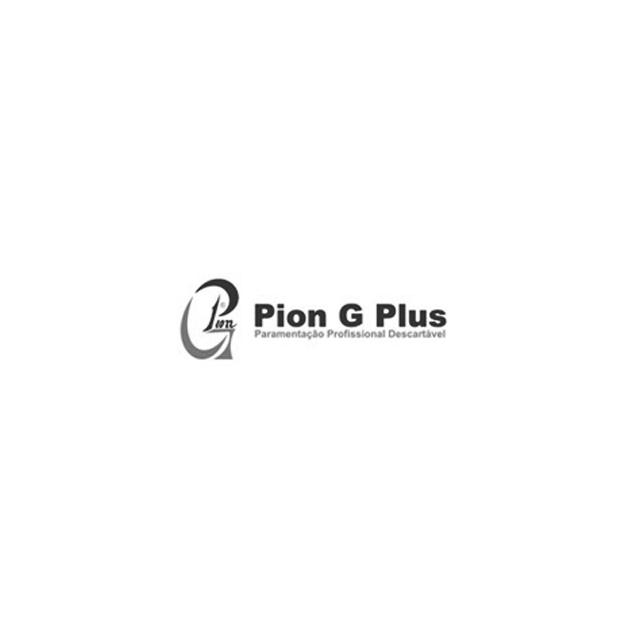Pion G Plus